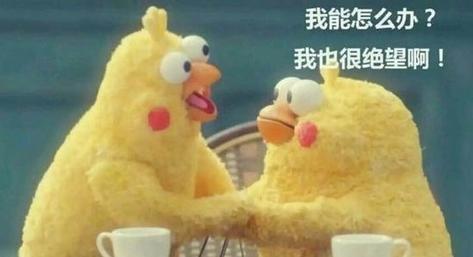 """今年""""金九银十""""  乐山楼市不感冒?"""