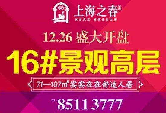 上海之春 16#楼王盛大开盘啦!!