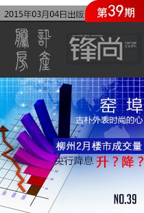 锋地产期刊2015年第39期