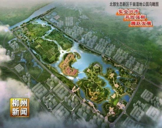 """我市将制定""""十三五""""湿地保护与恢复工程规划"""