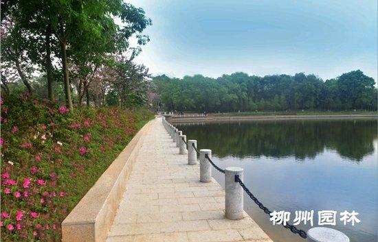 雀儿山公园雀湖游步道项目竣工验收