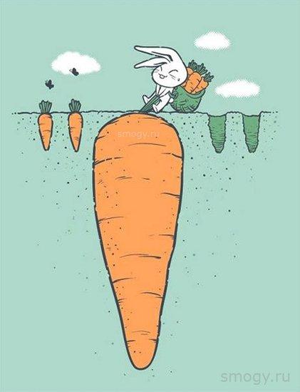 考虑到儿童们对《拔萝卜》歌曲和故事的喜爱,才得出这样一个创意,的确