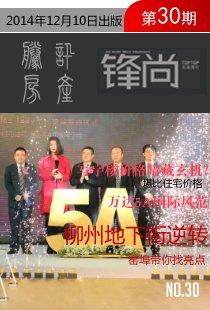 锋地产期刊2014年第30期