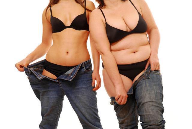 哪些生肖以胖为福气