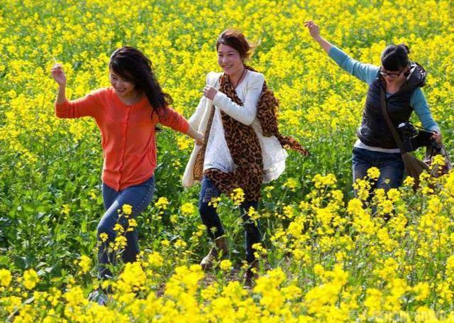 清明假期全省接待游客606万人次