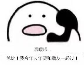 爸妈!这个春节我要和撸友一起过了!