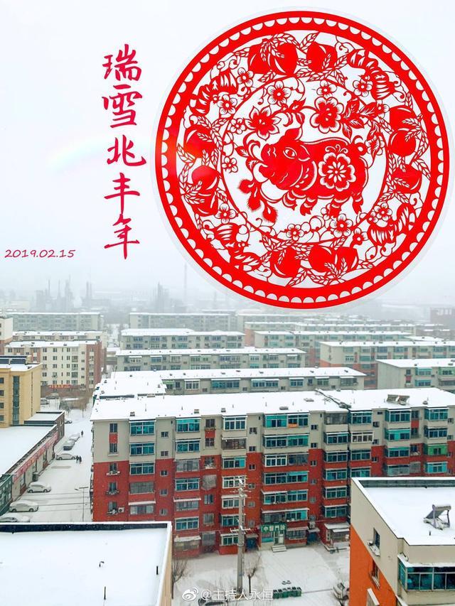 刷屏!今天辽宁的雪到底有多大?到底有多美?