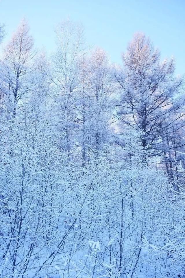 """现实版""""冰雪奇缘"""" 零下58℃河水不结冰"""