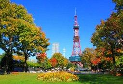 登上札幌电视塔欣赏秋季的景色
