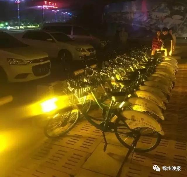 锦州投放共享单车了,看看在哪儿、咋用?