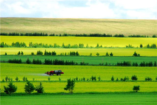赶个周末去内蒙 在鄂尔多斯草原上驰骋奔腾