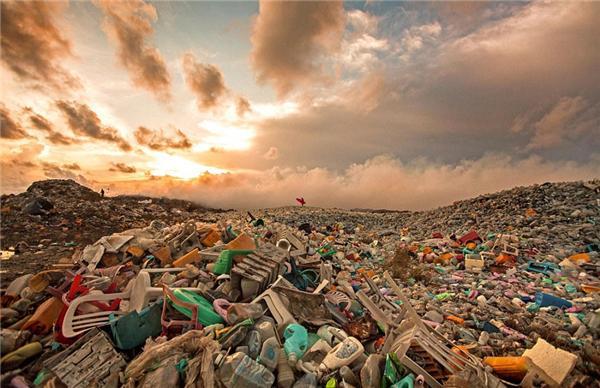 旅游业为什么会对环境造成污染?