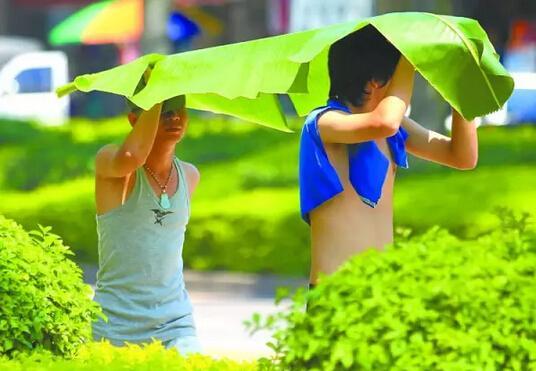"""辽宁今日降雨持续 周三正式入伏""""上蒸下煮"""""""