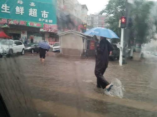 葫芦岛昨日降暴雨 砸下冰雹乒乓球那么大!