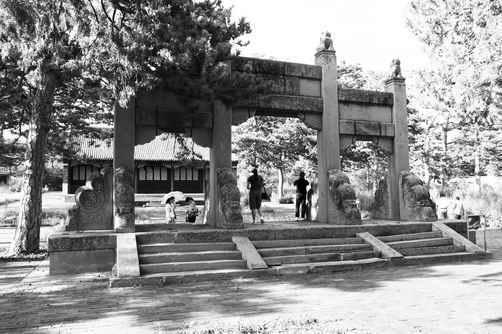 """朝阳市20处文物古迹入选成""""省宝"""""""