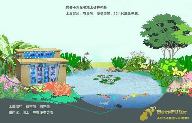 鱼池平面图手绘