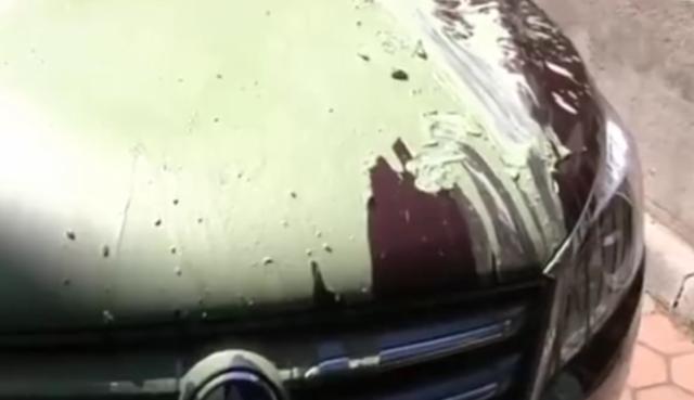 大连一女子疑遭报复车被泼漆 监控录下嫌疑人身影