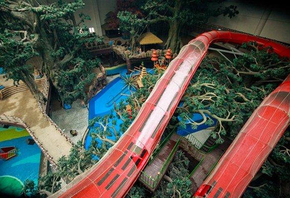 热高巴厘岛梦幻雨林