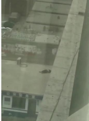 突发悲剧 凌源市中心医院门诊楼一男子坠楼当场身亡