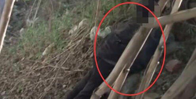村民开荒见男尸 悬吊1月以为假人