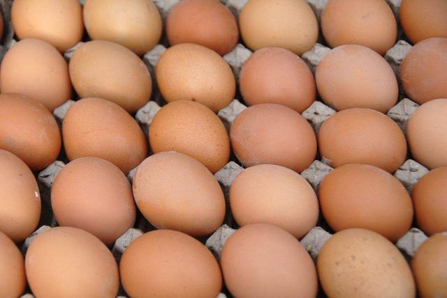 沈鸡蛋连涨6周11月均价8.51元/公斤