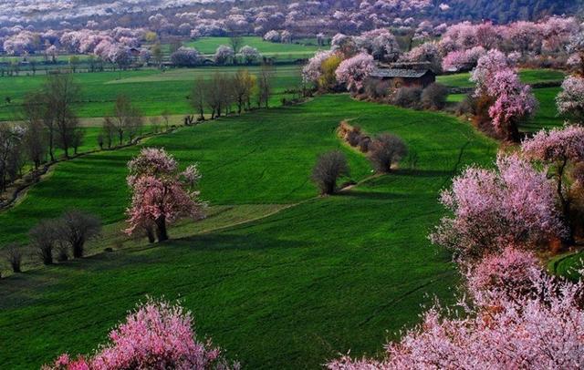 四月份适合去哪里旅游?