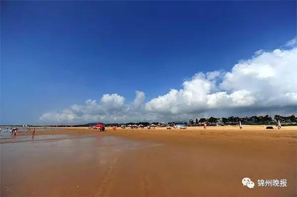 砥砺奋进的五年 锦州海滨理想照进了现实
