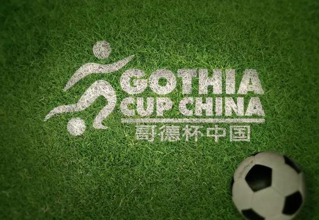 哥德杯中国世界青少年足球赛U17全球精英挑