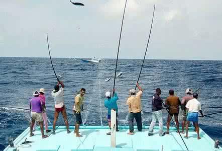 钓鱼老人落水 众人用绳将他拉上岸