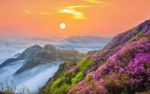 大黑山景区全面免费开放