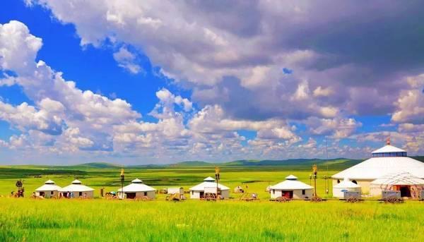 盛夏将至 是时候去草原撒个欢了