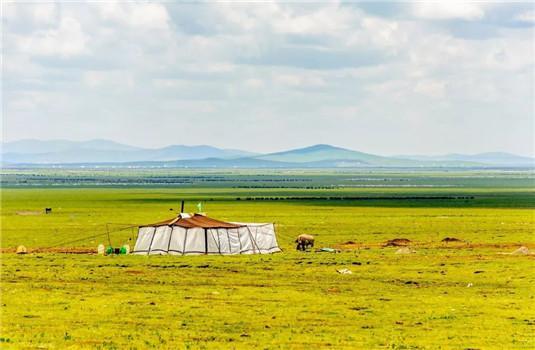 这片川西草原即将迎来最美季节