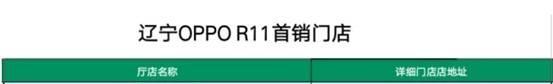R11辽宁全面开售丨首销购机惊喜享不停!