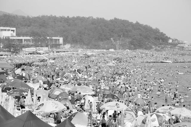 昨天大连傅家庄浴场接待游客5万人 已超过极限