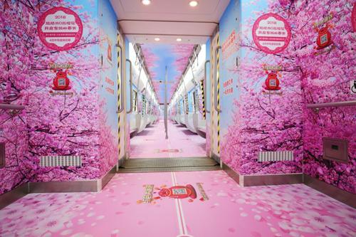乘上开往春天的地铁 去旅顺看樱花