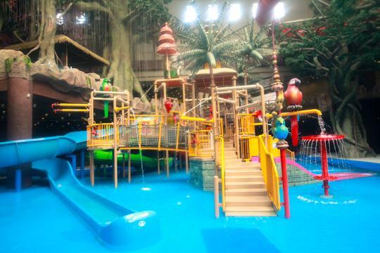 穿越到夏天,到巴厘岛梦幻雨林体验激情夏日