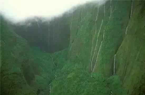 云雾森林-全球最值得去的21个地方 中国这个地方上榜