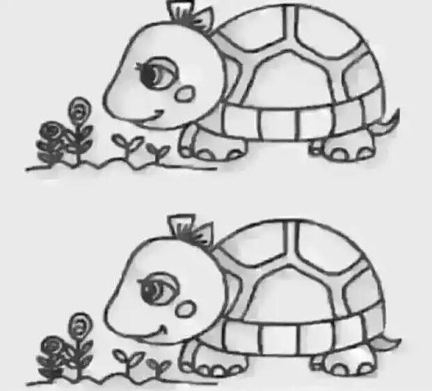 心理测试 两只小乌龟那里不同