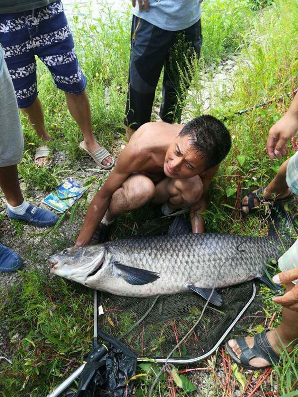 """男子钓到92斤""""巨无霸""""大青鱼 鱼身长达1.3米"""