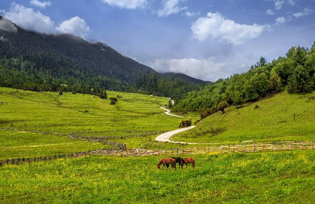 """""""以你之名,种草喜马拉雅""""2018自然堂喜马拉雅环保公益在行动"""
