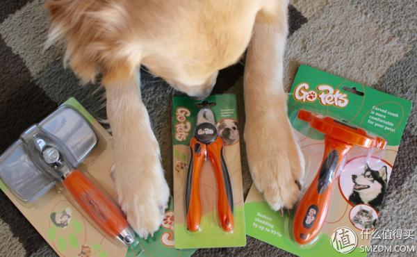 又是一年掉毛季,四海八荒的狗梳子你该怎么选?