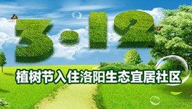 植树节,让我们的生活充满绿色