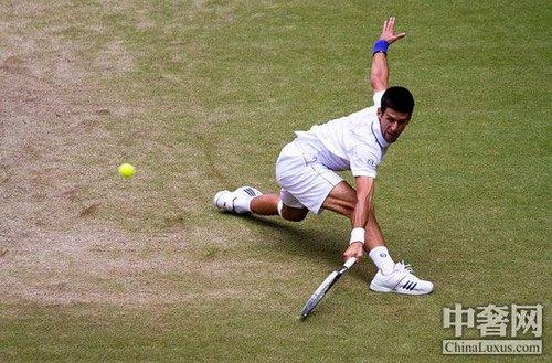 网球德约科维奇_彩色jpg网球运动德约科维奇彩色体育壁纸