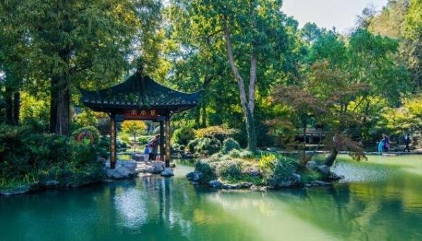 隐藏在杭州城西的植物园风景如画,很多外地人却只会去西湖