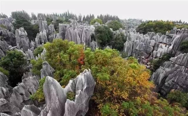 """""""云南只有一个景区,这个景区就叫云南"""" 全域旅游看中国"""