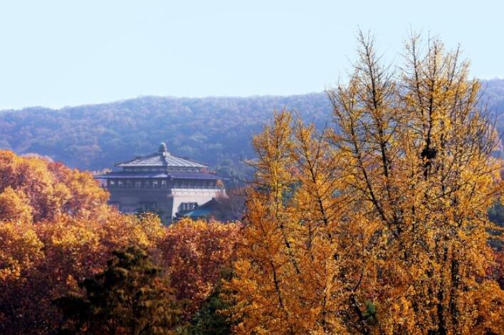 中国最美的大学秋天 只恨高考少考了几分