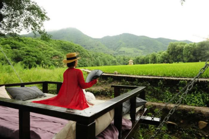 中国最为文艺稻田,没有蚊子让游客匪夷所思