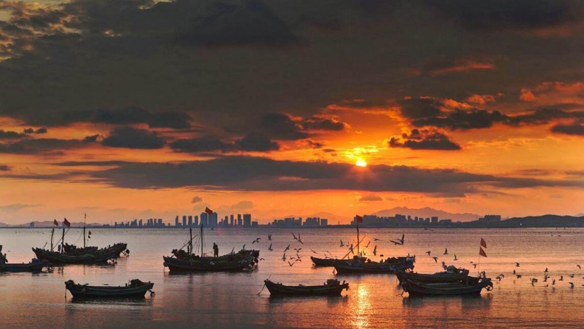 海口入选最受欢迎亲子旅游目的地