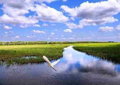 青海新增4处国家湿地公园 已达32.51万公顷
