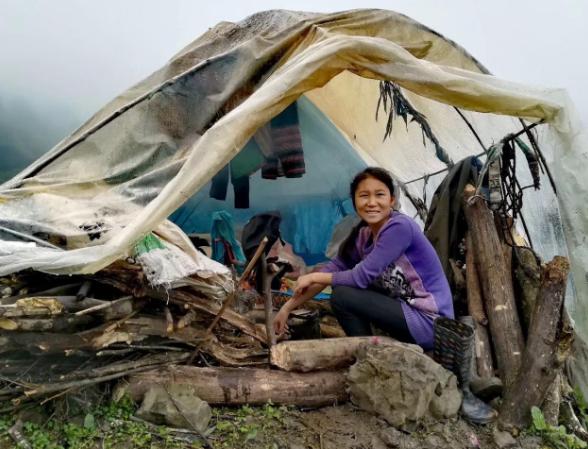 四川小凉山打笋季:塑料袋做帐篷住山脚下,一住近30天